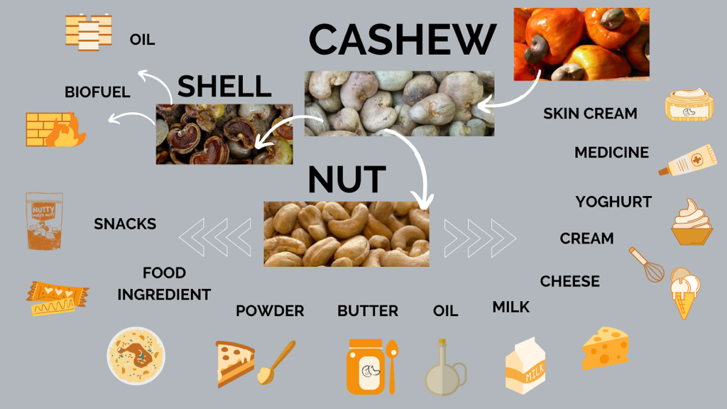 Cashew products