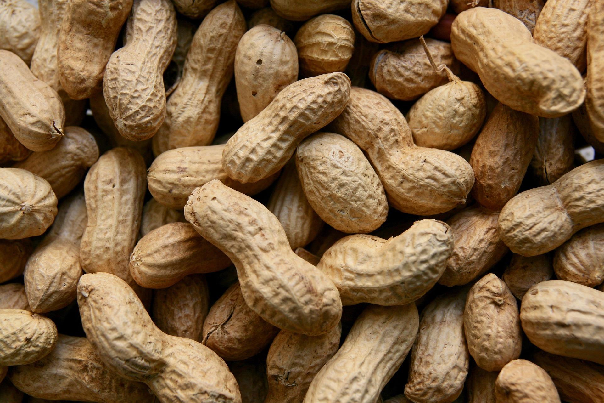 peanuts-3823362_1920.jpg