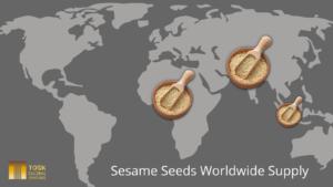 Global Sesame Seeds Supply